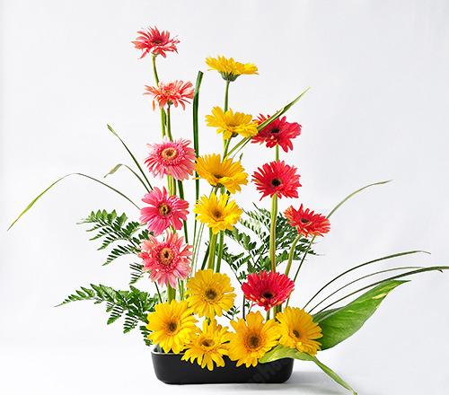 Chứng chỉ nghề cắm hoa- Dạy cắm hoa nghệ thuật